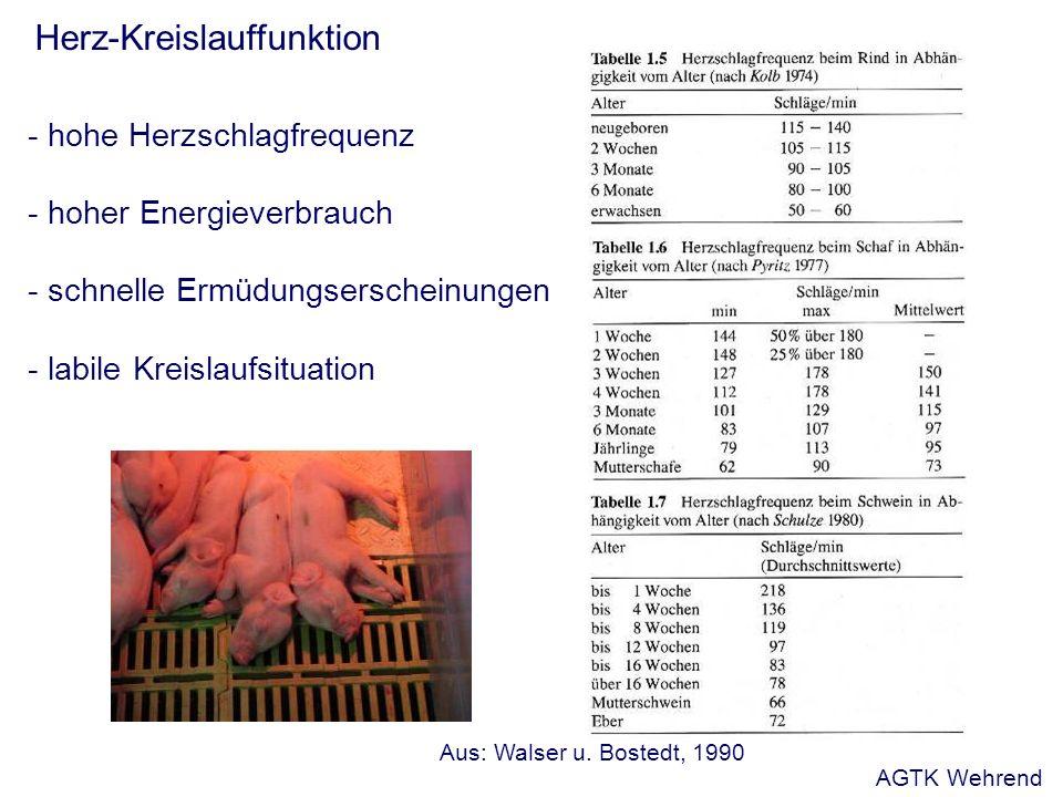 Herz-Kreislauffunktion - hohe Herzschlagfrequenz - hoher Energieverbrauch - schnelle Ermüdungserscheinungen - labile Kreislaufsituation Aus: Walser u.