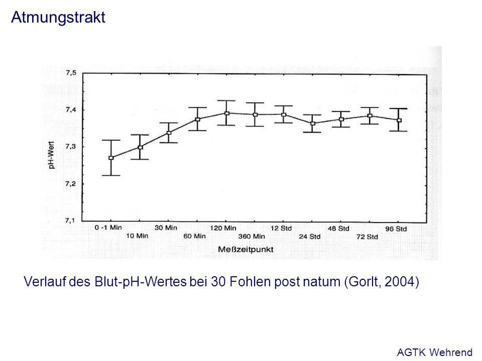 Atmungstrakt Verlauf des Blut-pH-Wertes bei 30 Fohlen post natum (Gorlt, 2004) AGTK Wehrend