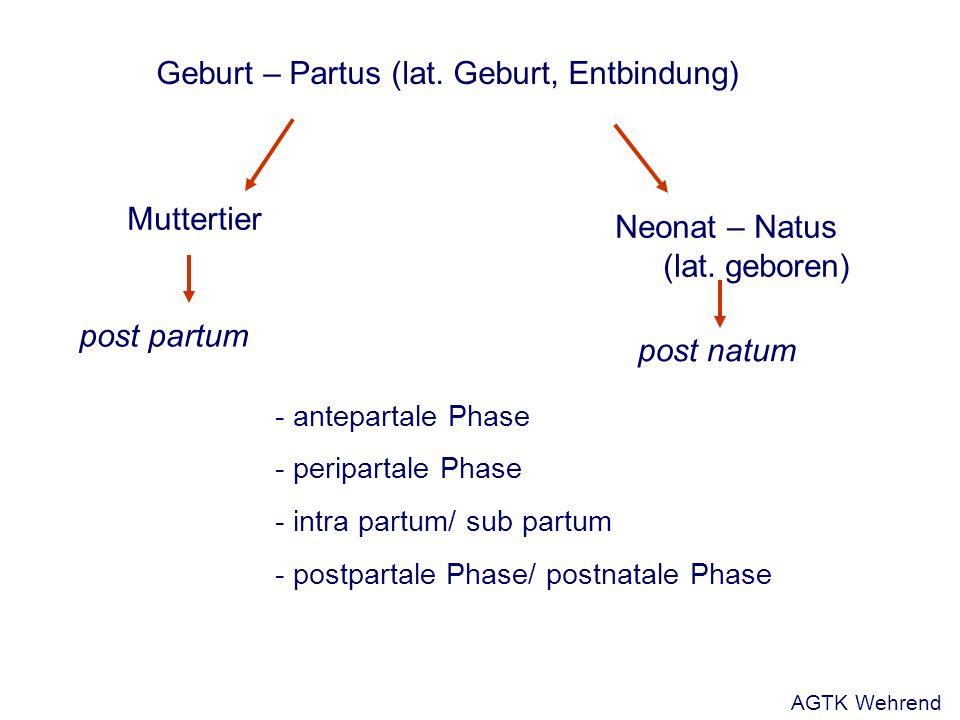 Geburt – Partus (lat. Geburt, Entbindung) post natum Neonat – Natus (lat.