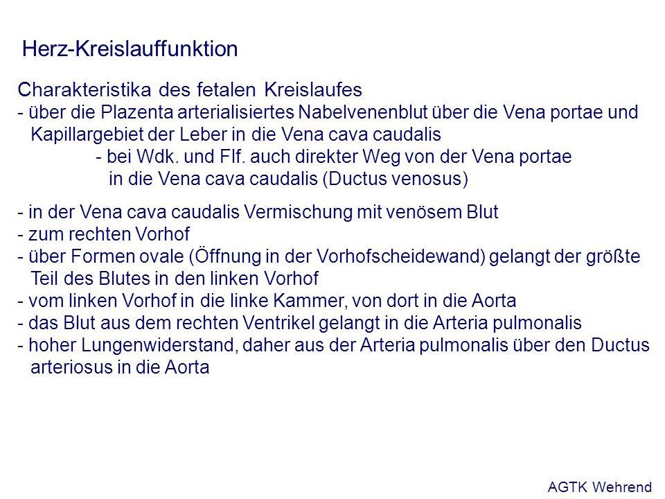 Aus: Schnorr u. Kressin, 2001 AGTK Wehrend