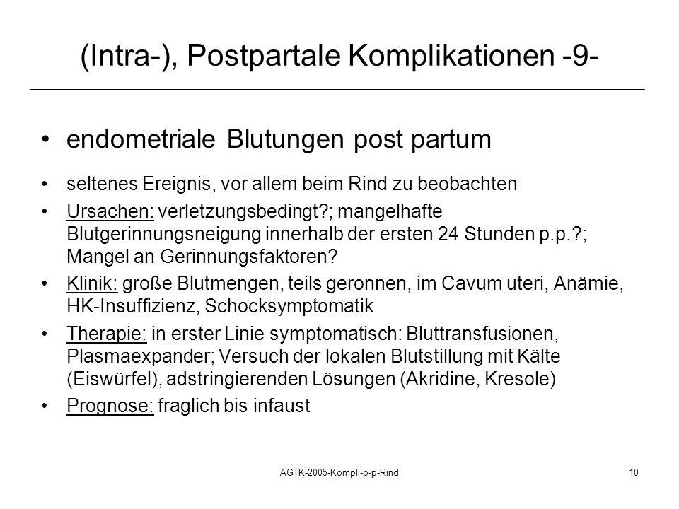 AGTK-2005-Kompli-p-p-Rind10 (Intra-), Postpartale Komplikationen -9- endometriale Blutungen post partum seltenes Ereignis, vor allem beim Rind zu beob