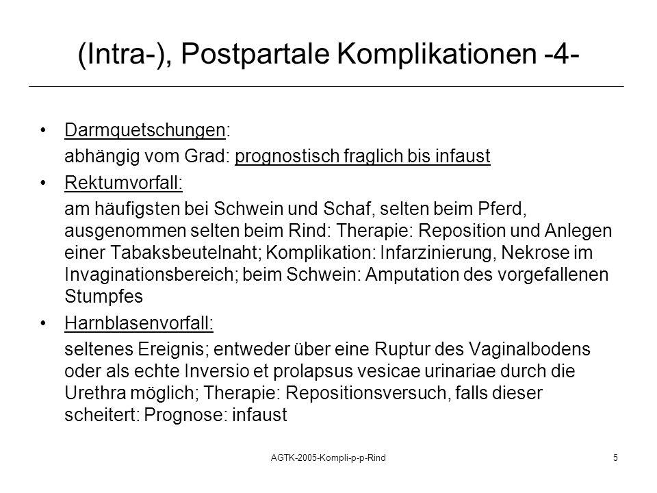 AGTK-2005-Kompli-p-p-Rind6 (Intra-), Postpartale Komplikationen -5- Arterienruptur im Uterusband, in der Uteruswand nahezu ausschließlich bei älteren, meist pluriparen Stuten Verlaufsformen, Symptomatik: schockbedingter Exitus letalis innerhalb der ersten Stunden p.p.; Koliken p.p., mittelgradige bis starke Allgemeinstörungen, Anämie, Ikterus, Hypogalaktie Pathogenese: Ruptur der A.