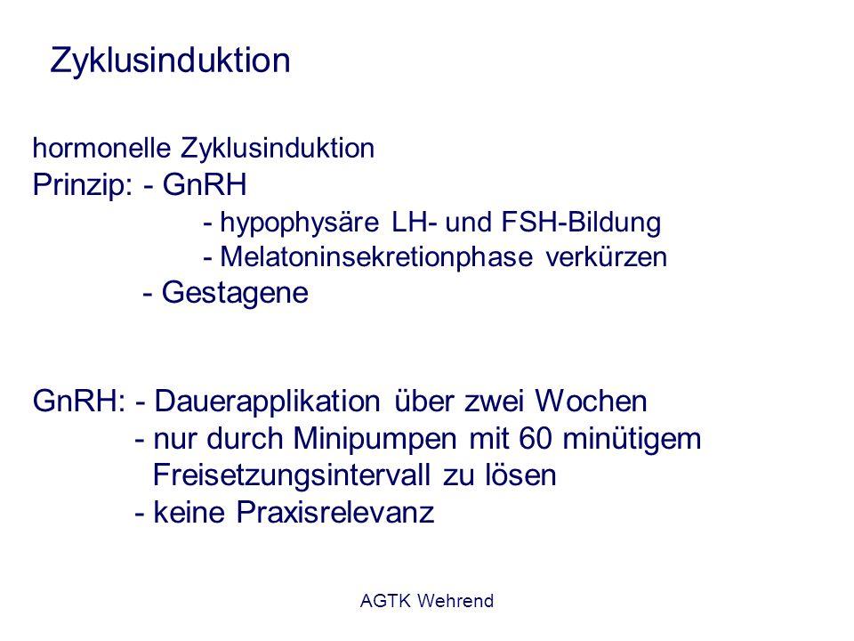 AGTK Wehrend Zyklusinduktion hormonelle Zyklusinduktion Prinzip: - GnRH - hypophysäre LH- und FSH-Bildung - Melatoninsekretionphase verkürzen - Gestagene GnRH: - Dauerapplikation über zwei Wochen - nur durch Minipumpen mit 60 minütigem Freisetzungsintervall zu lösen - keine Praxisrelevanz