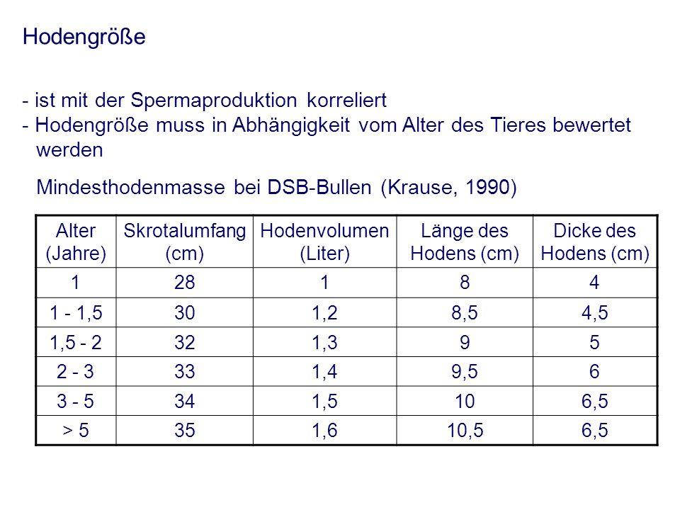 Hodengröße - ist mit der Spermaproduktion korreliert - Hodengröße muss in Abhängigkeit vom Alter des Tieres bewertet werden Mindesthodenmasse bei DSB-