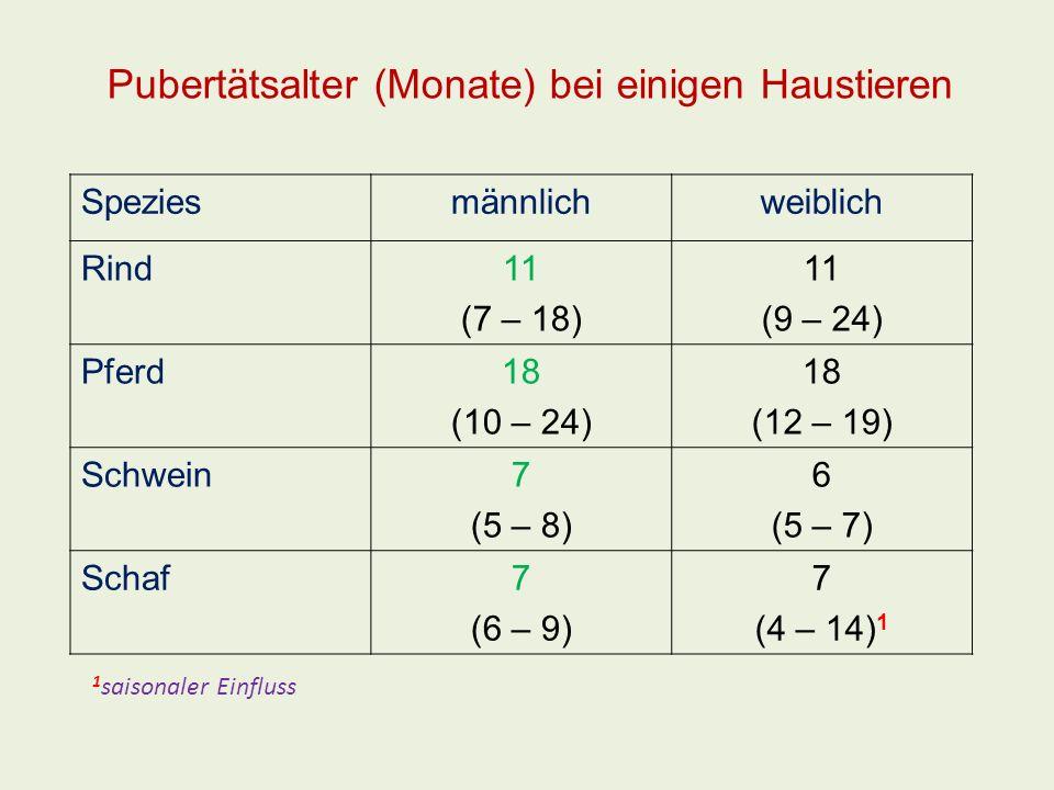 Pubertätsalter (Monate) bei einigen Haustieren Speziesmännlichweiblich Rind11 (7 – 18) 11 (9 – 24) Pferd18 (10 – 24) 18 (12 – 19) Schwein7 (5 – 8) 6 (
