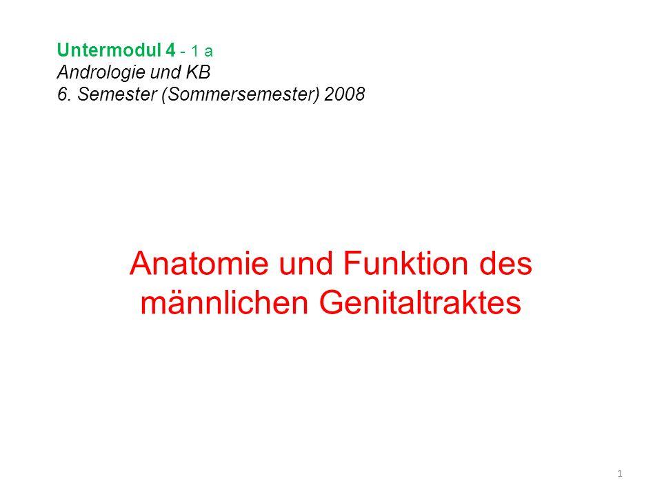 Untermodul 4 - 1 a Andrologie und KB 6. Semester (Sommersemester) 2008 Anatomie und Funktion des männlichen Genitaltraktes 1