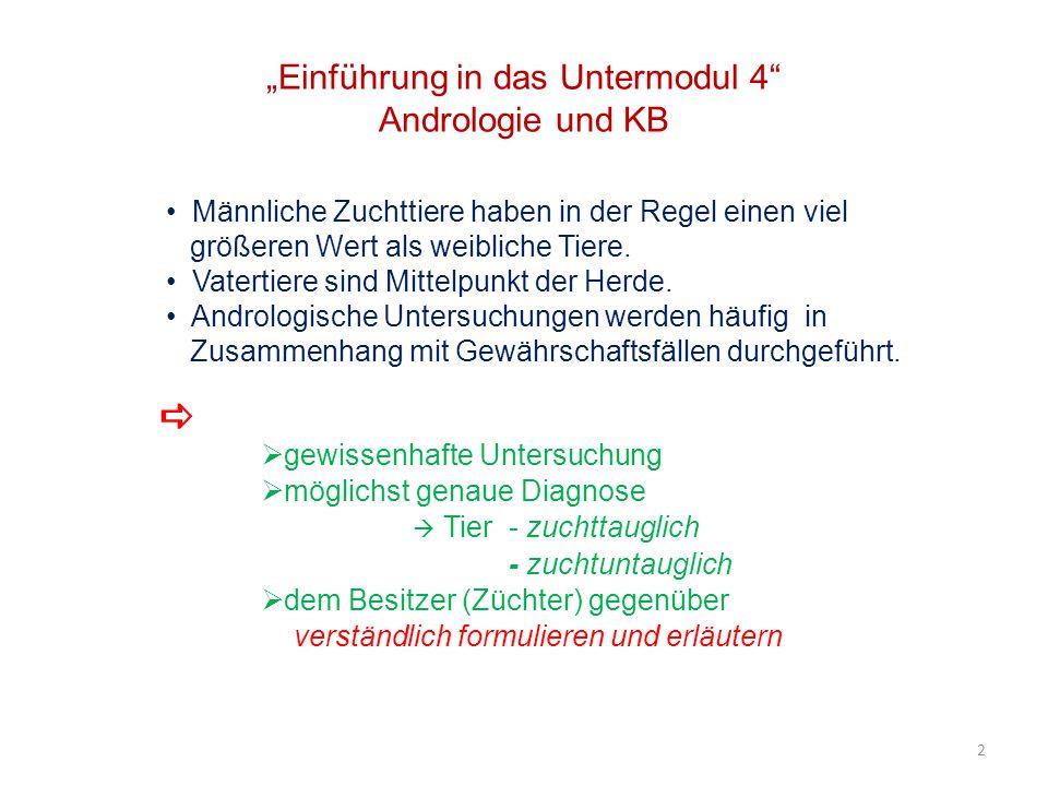 Einführung in das Untermodul 4 Andrologie und KB Männliche Zuchttiere haben in der Regel einen viel größeren Wert als weibliche Tiere. Vatertiere sind
