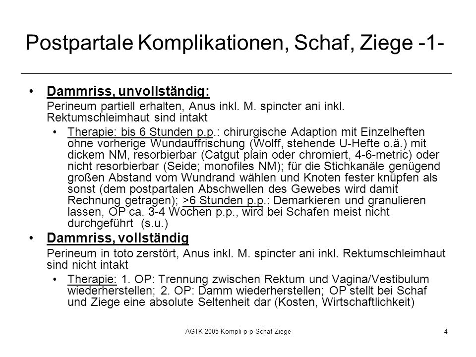 AGTK-2005-Kompli-p-p-Schaf-Ziege4 Postpartale Komplikationen, Schaf, Ziege -1- Dammriss, unvollständig: Perineum partiell erhalten, Anus inkl. M. spin