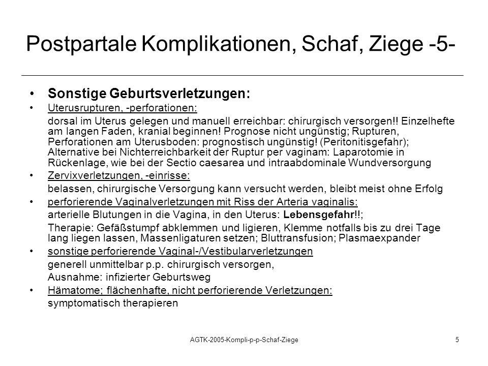 AGTK-2005-Kompli-p-p-Schaf-Ziege5 Postpartale Komplikationen, Schaf, Ziege -5- Sonstige Geburtsverletzungen: Uterusrupturen, -perforationen: dorsal im Uterus gelegen und manuell erreichbar: chirurgisch versorgen!.