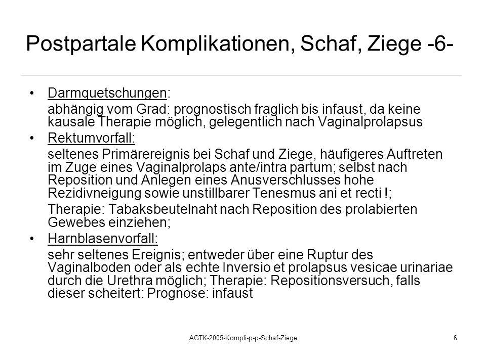AGTK-2005-Kompli-p-p-Schaf-Ziege6 Postpartale Komplikationen, Schaf, Ziege -6- Darmquetschungen: abhängig vom Grad: prognostisch fraglich bis infaust, da keine kausale Therapie möglich, gelegentlich nach Vaginalprolapsus Rektumvorfall: seltenes Primärereignis bei Schaf und Ziege, häufigeres Auftreten im Zuge eines Vaginalprolaps ante/intra partum; selbst nach Reposition und Anlegen eines Anusverschlusses hohe Rezidivneigung sowie unstillbarer Tenesmus ani et recti !; Therapie: Tabaksbeutelnaht nach Reposition des prolabierten Gewebes einziehen; Harnblasenvorfall: sehr seltenes Ereignis; entweder über eine Ruptur des Vaginalboden oder als echte Inversio et prolapsus vesicae urinariae durch die Urethra möglich; Therapie: Repositionsversuch, falls dieser scheitert: Prognose: infaust