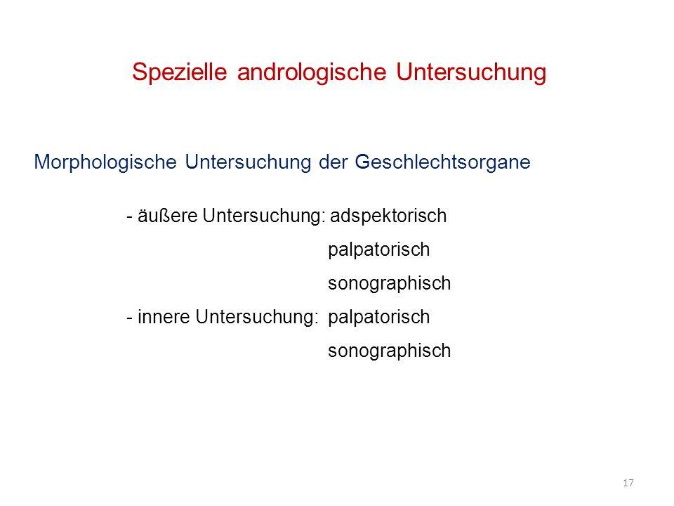 17 Spezielle andrologische Untersuchung Morphologische Untersuchung der Geschlechtsorgane - äußere Untersuchung: adspektorisch palpatorisch sonographi