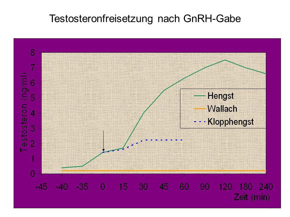 44 Testosteronfreisetzung nach GnRH-Gabe