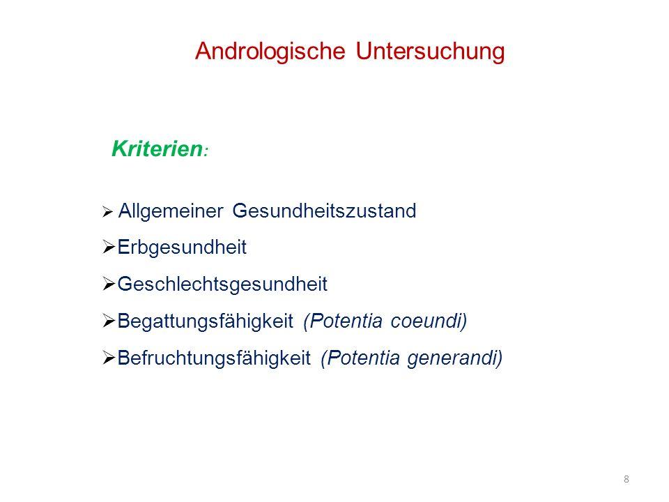 29 Innere Untersuchung der Geschlechtsorgane Durch Palpation und Sonographie Akzessorische Geschlechtsdrüsen Samenblasendrüse (Gl.