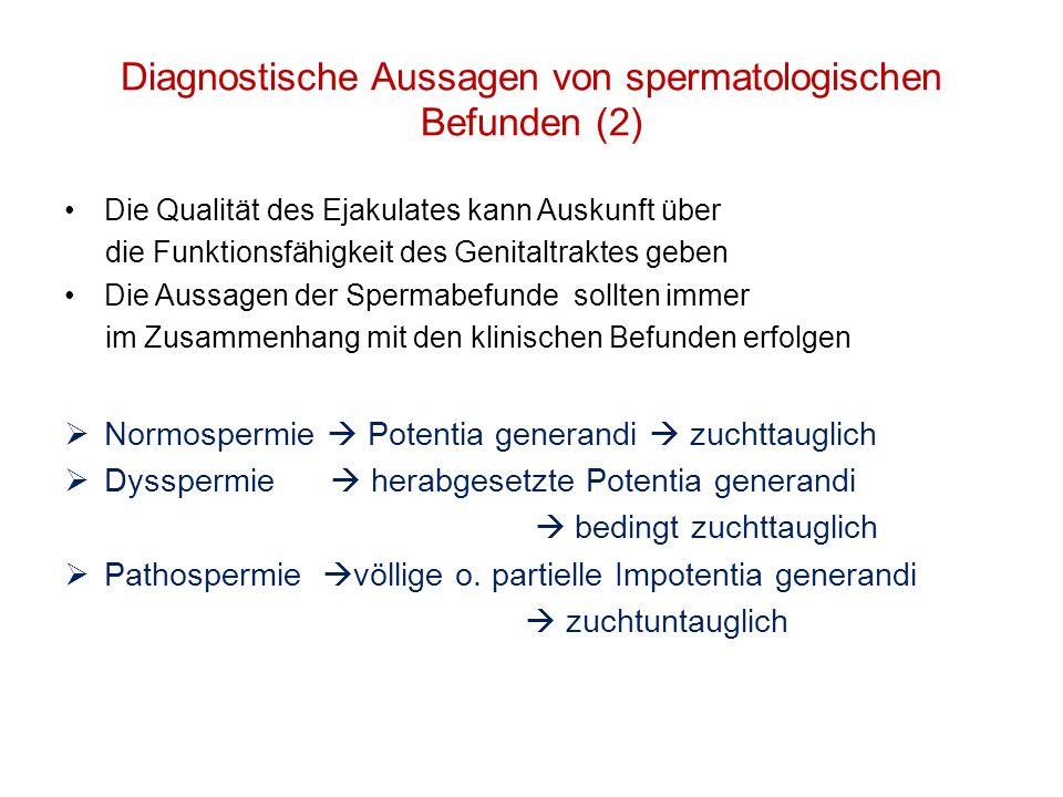 Diagnostische Aussagen von spermatologischen Befunden (2) Die Qualität des Ejakulates kann Auskunft über die Funktionsfähigkeit des Genitaltraktes geb