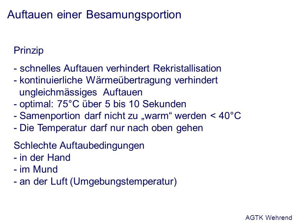 Auftauen einer Besamungsportion Prinzip - schnelles Auftauen verhindert Rekristallisation - kontinuierliche Wärmeübertragung verhindert ungleichmässiges Auftauen - optimal: 75°C über 5 bis 10 Sekunden - Samenportion darf nicht zu warm werden < 40°C - Die Temperatur darf nur nach oben gehen Schlechte Auftaubedingungen - in der Hand - im Mund - an der Luft (Umgebungstemperatur) AGTK Wehrend