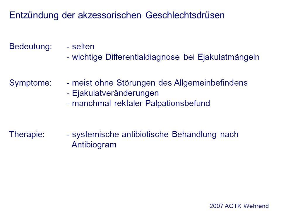 Entzündung der akzessorischen Geschlechtsdrüsen Bedeutung: - selten - wichtige Differentialdiagnose bei Ejakulatmängeln Symptome:- meist ohne Störungen des Allgemeinbefindens - Ejakulatveränderungen - manchmal rektaler Palpationsbefund Therapie:- systemische antibiotische Behandlung nach Antibiogram 2007 AGTK Wehrend