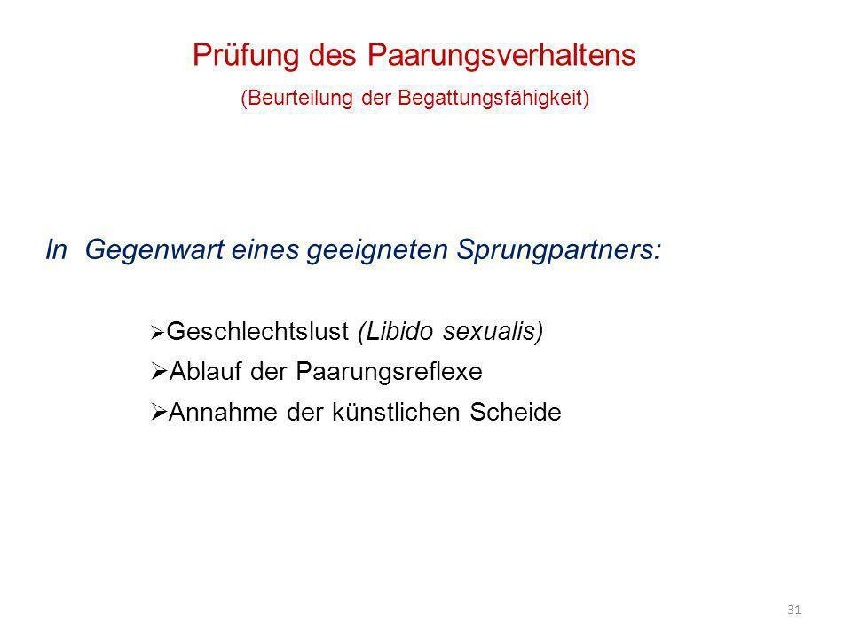 31 Prüfung des Paarungsverhaltens (Beurteilung der Begattungsfähigkeit) In Gegenwart eines geeigneten Sprungpartners: Geschlechtslust (Libido sexualis