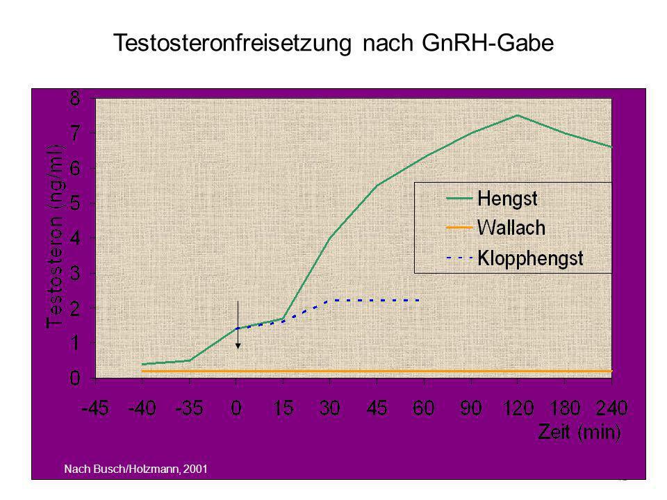 41 Testosteronfreisetzung nach GnRH-Gabe Nach Busch/Holzmann, 2001
