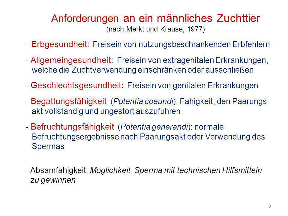 9 Anforderungen an ein männliches Zuchttier (nach Merkt und Krause, 1977) - Erbgesundheit: Freisein von nutzungsbeschränkenden Erbfehlern - Allgemeing