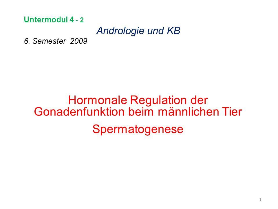Untermodul 4 - 2 Andrologie und KB 6. Semester 2009 Hormonale Regulation der Gonadenfunktion beim männlichen Tier Spermatogenese 1