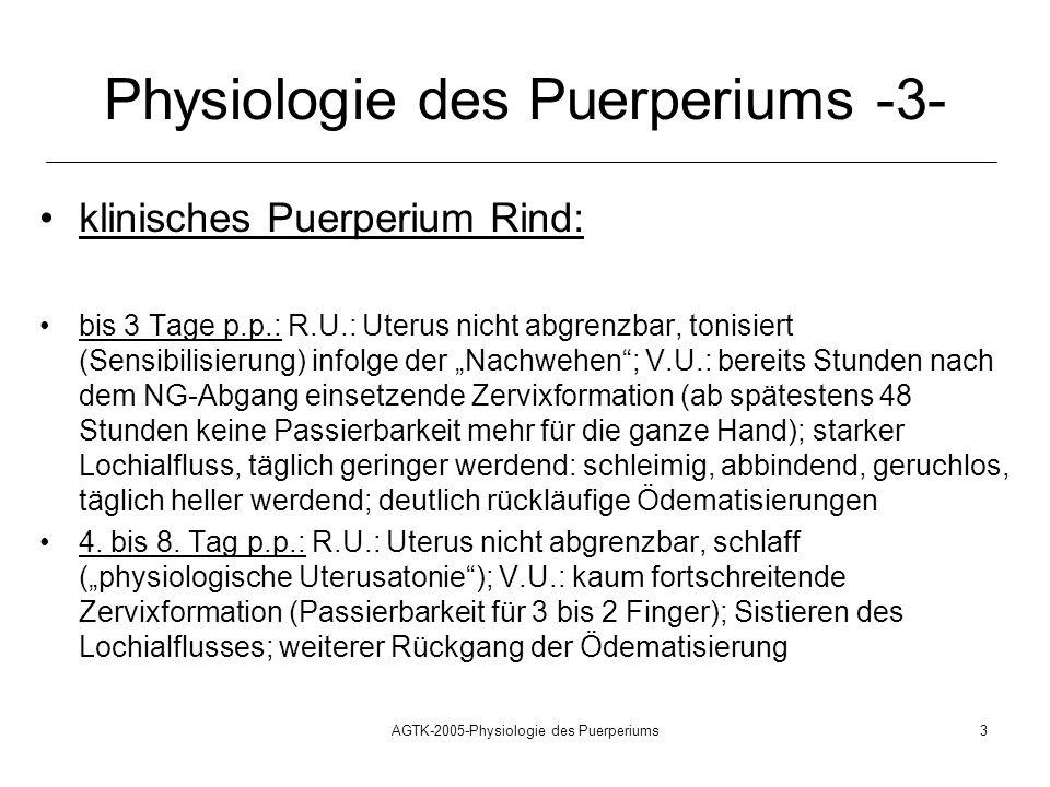 AGTK-2005-Physiologie des Puerperiums3 Physiologie des Puerperiums -3- klinisches Puerperium Rind: bis 3 Tage p.p.: R.U.: Uterus nicht abgrenzbar, ton
