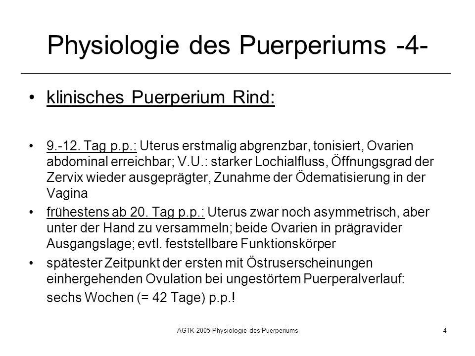 AGTK-2005-Physiologie des Puerperiums4 Physiologie des Puerperiums -4- klinisches Puerperium Rind: 9.-12. Tag p.p.: Uterus erstmalig abgrenzbar, tonis