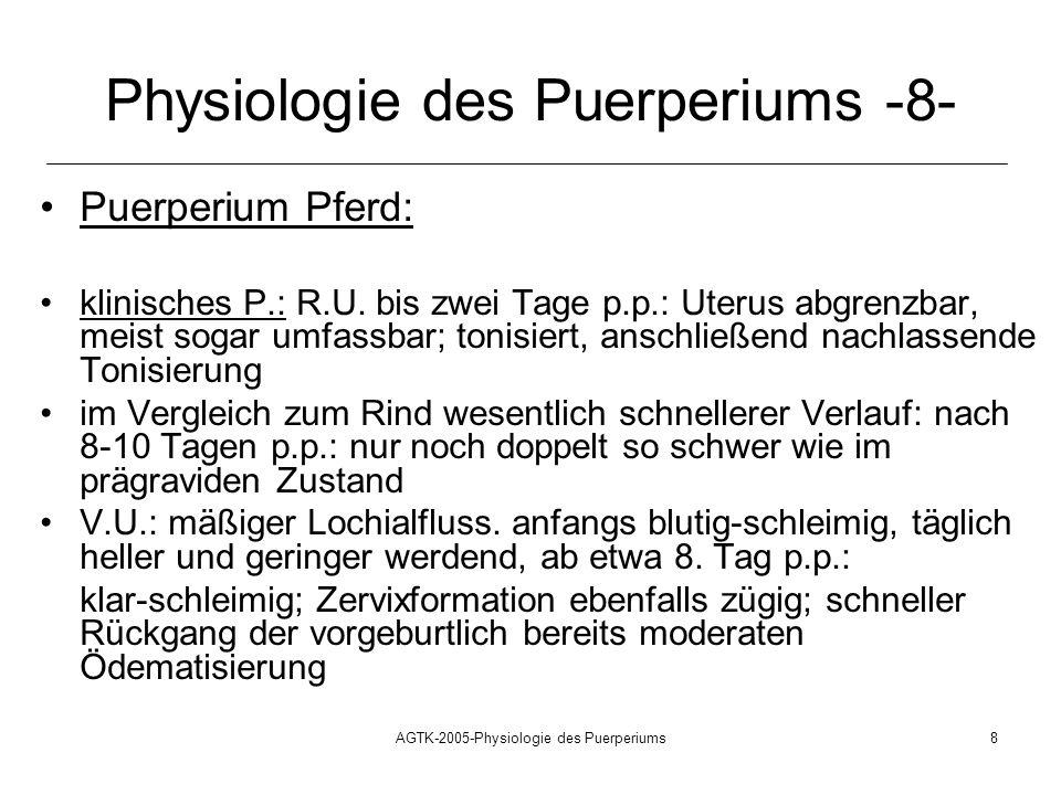 AGTK-2005-Physiologie des Puerperiums8 Physiologie des Puerperiums -8- Puerperium Pferd: klinisches P.: R.U. bis zwei Tage p.p.: Uterus abgrenzbar, me