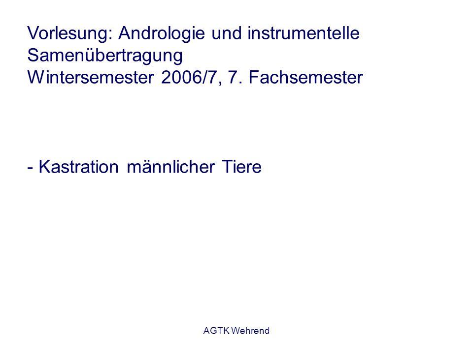 AGTK Wehrend Analgesie bei Schaf- und Ziegenböcken zur Kastration - Gabe von Flunixin/Meglumin (2 mg/kg KM) - Zumindest am Tag der Operation