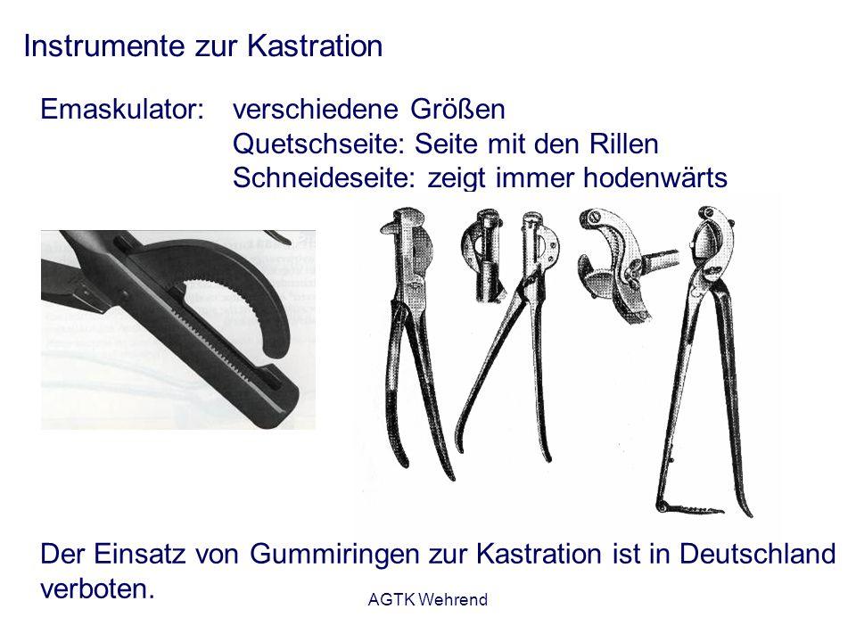 AGTK Wehrend Instrumente zur Kastration Emaskulator: verschiedene Größen Quetschseite: Seite mit den Rillen Schneideseite: zeigt immer hodenwärts Der Einsatz von Gummiringen zur Kastration ist in Deutschland verboten.