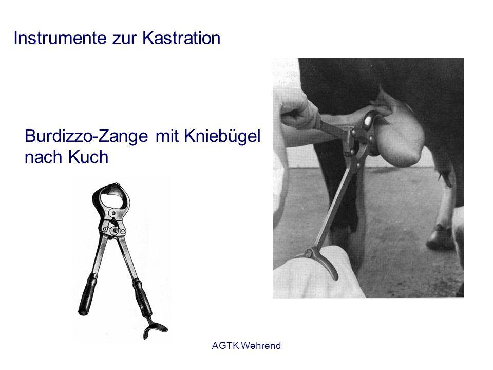 AGTK Wehrend Instrumente zur Kastration Burdizzo-Zange mit Kniebügel nach Kuch