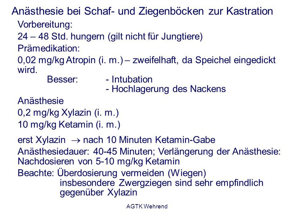 AGTK Wehrend Anästhesie bei Schaf- und Ziegenböcken zur Kastration Vorbereitung: 24 – 48 Std.