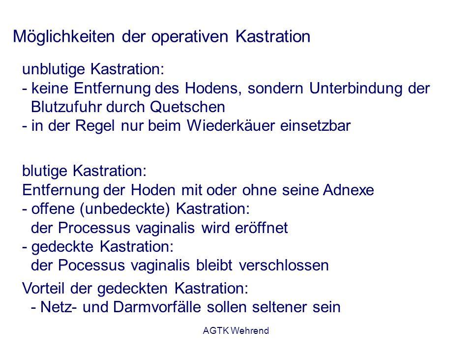 AGTK Wehrend Möglichkeiten der operativen Kastration unblutige Kastration: - keine Entfernung des Hodens, sondern Unterbindung der Blutzufuhr durch Quetschen - in der Regel nur beim Wiederkäuer einsetzbar blutige Kastration: Entfernung der Hoden mit oder ohne seine Adnexe - offene (unbedeckte) Kastration: der Processus vaginalis wird eröffnet - gedeckte Kastration: der Pocessus vaginalis bleibt verschlossen Vorteil der gedeckten Kastration: - Netz- und Darmvorfälle sollen seltener sein