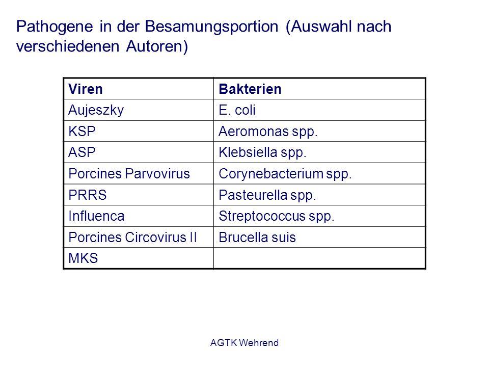 AGTK Wehrend Pathogene in der Besamungsportion (Auswahl nach verschiedenen Autoren) VirenBakterien AujeszkyE.
