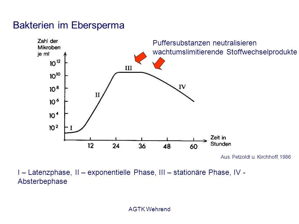 AGTK Wehrend Bakterien im Ebersperma I – Latenzphase, II – exponentielle Phase, III – stationäre Phase, IV - Absterbephase Aus: Petzoldt u.
