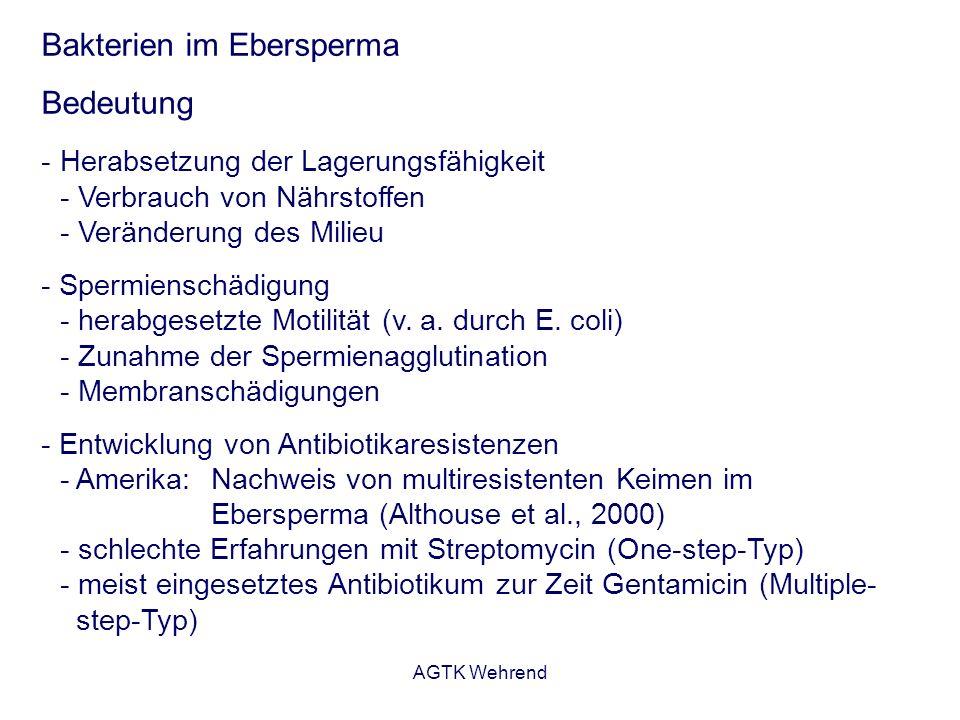 AGTK Wehrend Bakterien im Ebersperma Bedeutung - Herabsetzung der Lagerungsfähigkeit - Verbrauch von Nährstoffen - Veränderung des Milieu - Spermienschädigung - herabgesetzte Motilität (v.