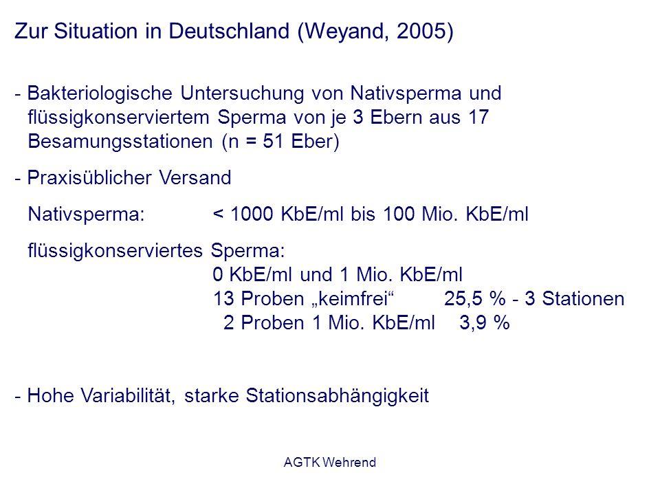 AGTK Wehrend Zur Situation in Deutschland (Weyand, 2005) - Bakteriologische Untersuchung von Nativsperma und flüssigkonserviertem Sperma von je 3 Ebern aus 17 Besamungsstationen (n = 51 Eber) - Praxisüblicher Versand Nativsperma: < 1000 KbE/ml bis 100 Mio.
