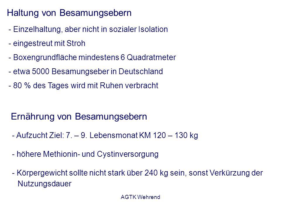 AGTK Wehrend Haltung von Besamungsebern - Einzelhaltung, aber nicht in sozialer Isolation - eingestreut mit Stroh - Boxengrundfläche mindestens 6 Quadratmeter - etwa 5000 Besamungseber in Deutschland - 80 % des Tages wird mit Ruhen verbracht Ernährung von Besamungsebern - Aufzucht Ziel: 7.