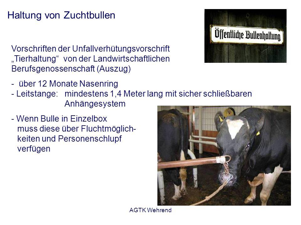 AGTK Wehrend Haltung von Zuchtbullen Vorschriften der Unfallverhütungsvorschrift Tierhaltung von der Landwirtschaftlichen Berufsgenossenschaft (Auszug