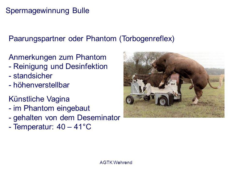 AGTK Wehrend Spermagewinnung Bulle Paarungspartner oder Phantom (Torbogenreflex) Anmerkungen zum Phantom - Reinigung und Desinfektion - standsicher -