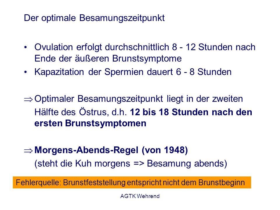 AGTK Wehrend Der optimale Besamungszeitpunkt Ovulation erfolgt durchschnittlich 8 - 12 Stunden nach Ende der äußeren Brunstsymptome Kapazitation der S