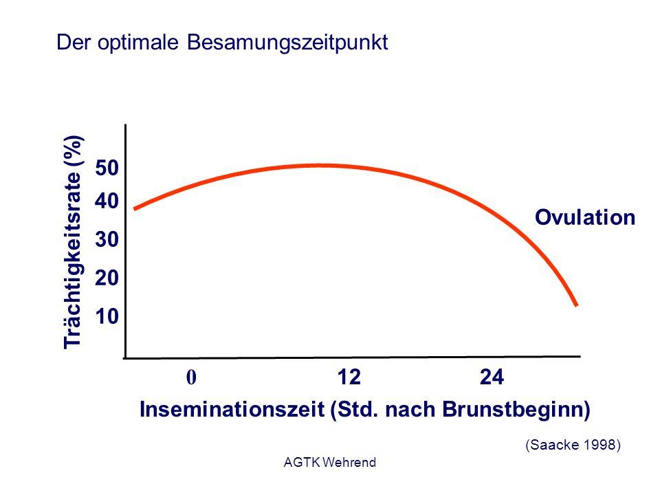 AGTK Wehrend Der optimale Besamungszeitpunkt 0 1224 Inseminationszeit (Std. nach Brunstbeginn) (Saacke 1998) Trächtigkeitsrate (%) 10 20 30 40 50 Ovul