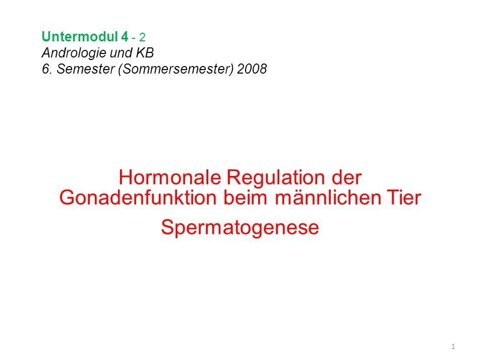 Untermodul 4 - 2 Andrologie und KB 6. Semester (Sommersemester) 2008 Hormonale Regulation der Gonadenfunktion beim männlichen Tier Spermatogenese 1