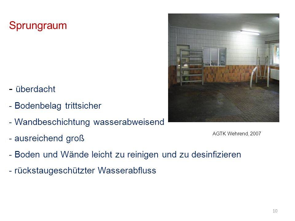 Sprungraum - überdacht - Bodenbelag trittsicher - Wandbeschichtung wasserabweisend - ausreichend groß - Boden und Wände leicht zu reinigen und zu desinfizieren - rückstaugeschützter Wasserabfluss 10 AGTK Wehrend, 2007