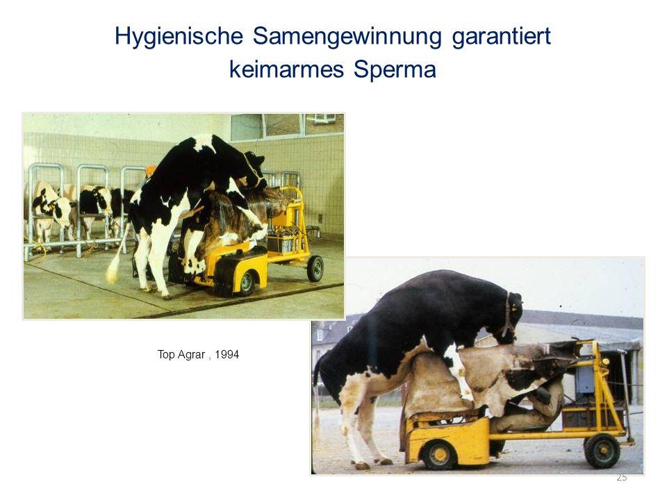 Hygienische Samengewinnung garantiert keimarmes Sperma 25 Top Agrar, 1994