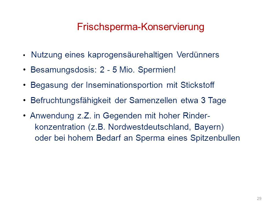 Frischsperma-Konservierung Nutzung eines kaprogensäurehaltigen Verdünners Besamungsdosis: 2 - 5 Mio.