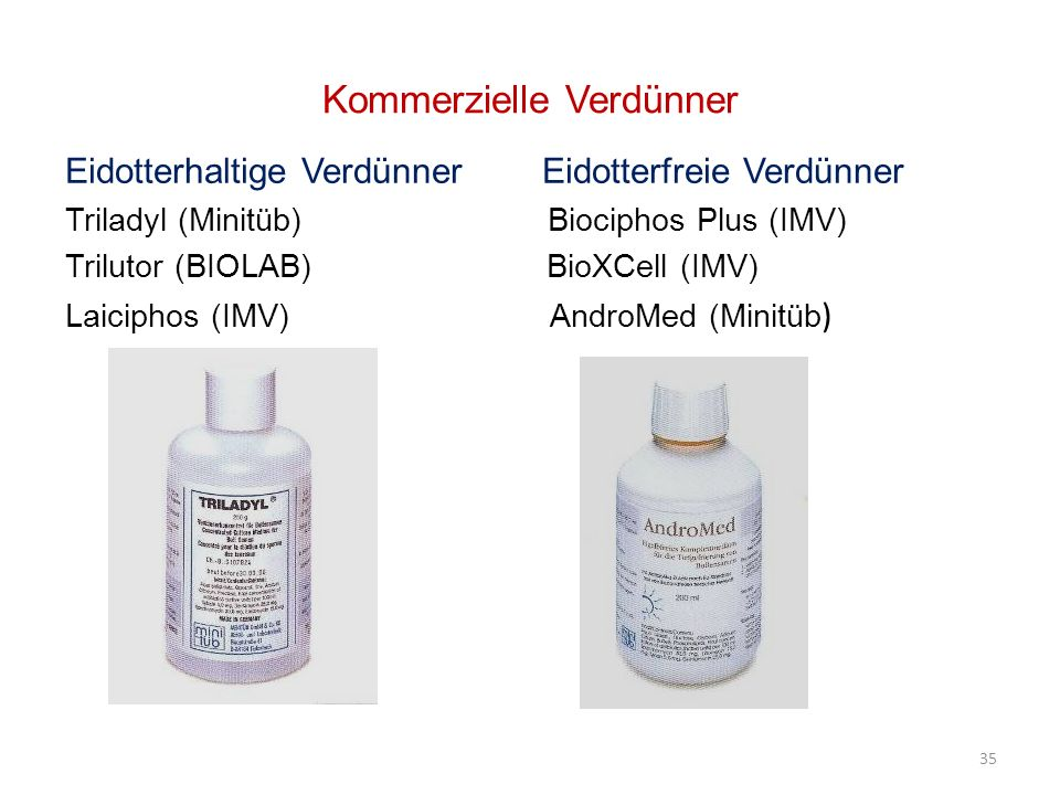 Kommerzielle Verdünner Eidotterhaltige Verdünner Eidotterfreie Verdünner Triladyl (Minitüb) Biociphos Plus (IMV) Trilutor (BIOLAB) BioXCell (IMV) Laiciphos (IMV) AndroMed (Minitüb ) 35