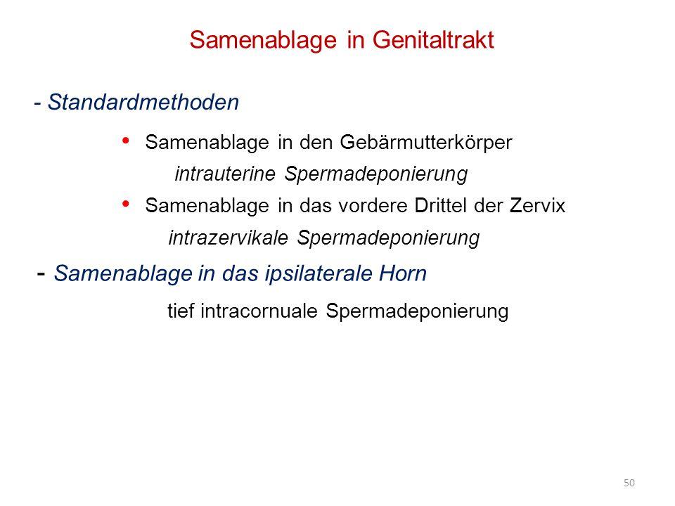 Samenablage in den Gebärmutterkörper intrauterine Spermadeponierung Samenablage in das vordere Drittel der Zervix intrazervikale Spermadeponierung - Samenablage in das ipsilaterale Horn tief intracornuale Spermadeponierung Samenablage in Genitaltrakt - Standardmethoden 50
