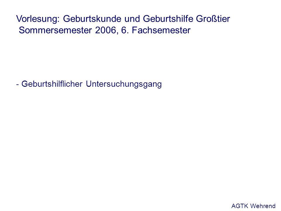 Vorlesung: Geburtskunde und Geburtshilfe Großtier Sommersemester 2006, 6. Fachsemester - Geburtshilflicher Untersuchungsgang AGTK Wehrend
