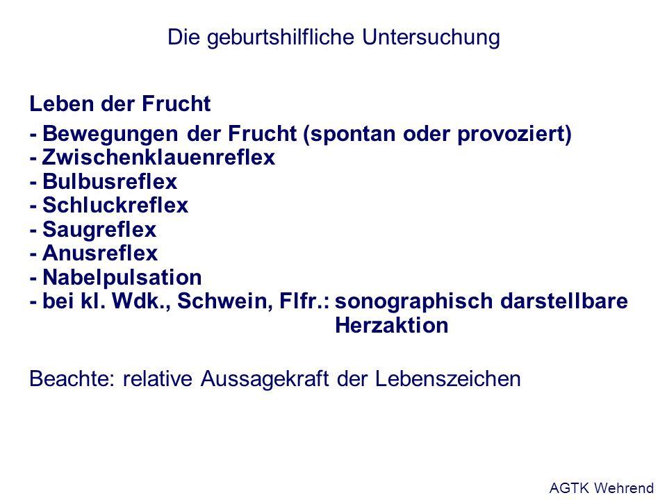 Die geburtshilfliche Untersuchung Leben der Frucht - Bewegungen der Frucht (spontan oder provoziert) - Zwischenklauenreflex - Bulbusreflex - Schluckre
