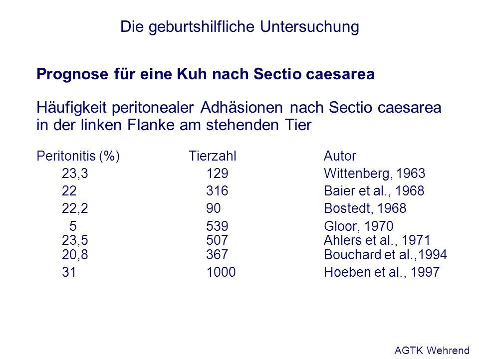 Die geburtshilfliche Untersuchung Prognose für eine Kuh nach Sectio caesarea Häufigkeit peritonealer Adhäsionen nach Sectio caesarea in der linken Fla